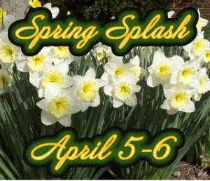 Spring+Splash+logo