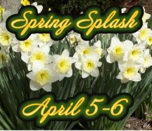 Spring+Splash+logo